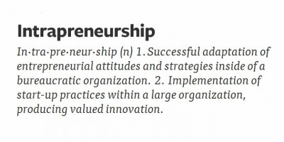 What is Intrapreneurship?